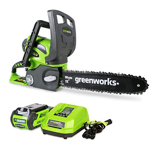 Greenworks 40V 12-Inch Cordless Chainsaw, 2.0 AH Battery and Charger Included, 20262