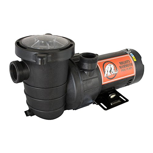 2 Horsepower Above Ground Pool Pump with Cord - Mighty Mammoth High Performance Motor for Clean Swimming Pool Water - 2 HP - 110V-120V - 60HZ