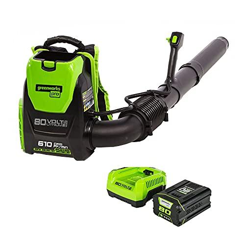 Greenworks Pro 80V (145 MPH / 580 CFM) Cordless Backpack Leaf Blower, 2.5Ah Battery and Charger Included BPB80L2510