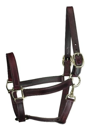 Perri's Horse Track Style Leather Turnout Halter with Snap, Havana