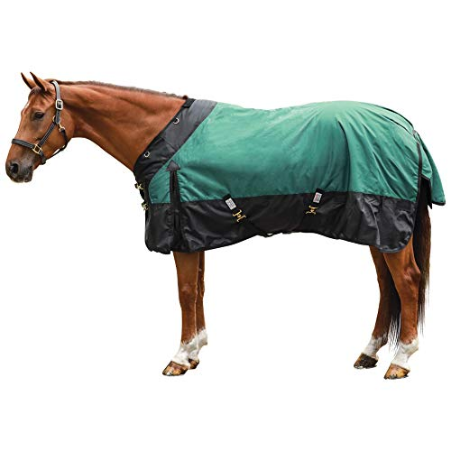 STORM SHIELD Extreme Turnout Sheet - Playful Horses | Size 72 Green | 1680 Denier | Contour Collar | Criss-Cross Surcingle | Euro Fit | Waterproof, Windproof & Breathable | Easy Snap Front