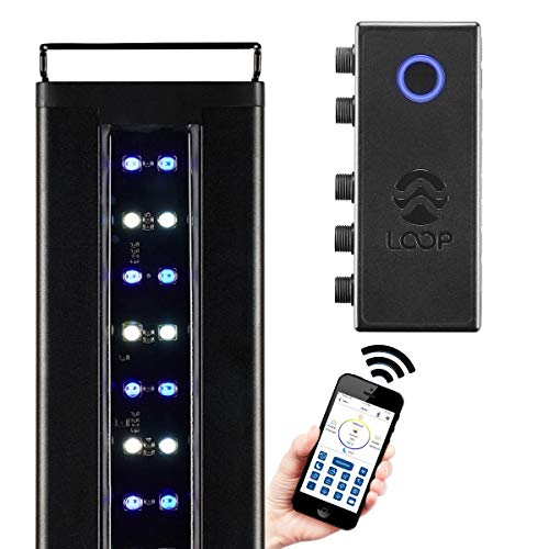 CURRENT USA Orbit Marine IC LED Saltwater Reef Aquarium Light | with Wireless Lighting & Wave Pump Control | Loop App - Bluetooth | Fits Fish Aquariums 48'-60'