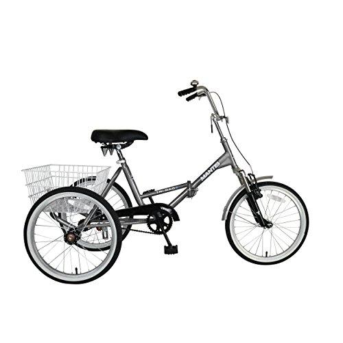 Tri-Rad 20 Inch Wheels Single Speed Adult Folding Tricycle, Silver