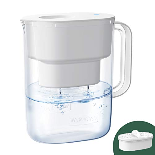 Waterdrop Lucid 10-Cup Water Filter Pitcher, Long-Lasting (200 gallons), NSF Certified, 5X Times Lifetime Filtration Jug, Reduces Lead, Fluoride, Chlorine and More, BPA Free, White, Model: WD-PT-07W