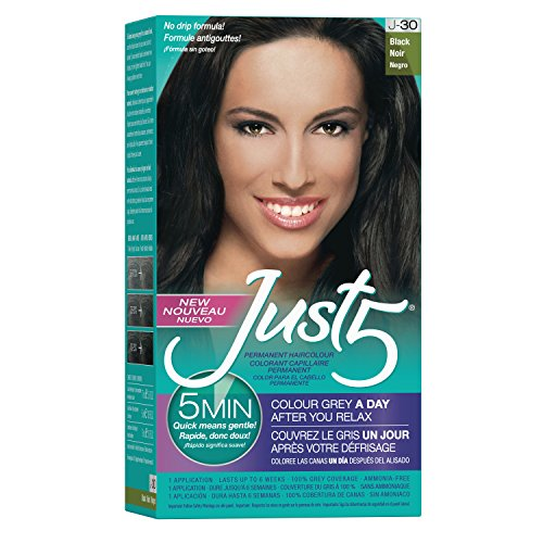Just 5 Women's 5 Minute Permanent Hair Color with Conditioner, Grey Hair Coloring for Women - Black Noir