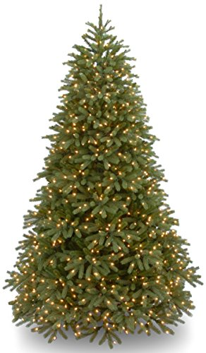 National Tree Company 'Feel Real' Pre-lit Artificial Christmas Tree | Includes Pre-strung Multi-Color LED Lights and Stand | Jersey Fraser Fir Medium