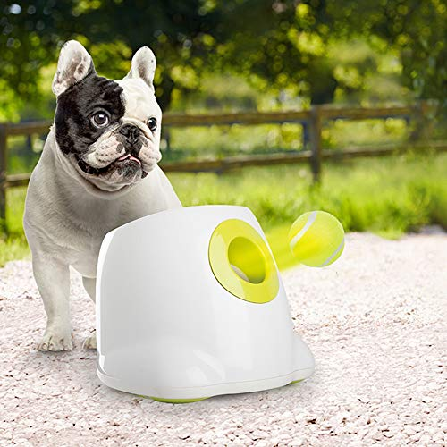 All for Paws Interactive Dog Automatic Ball Launcher, Tennis Ball Throwing Machine for Small and Medium Size Dog, 3 Balls Included, Mini Version