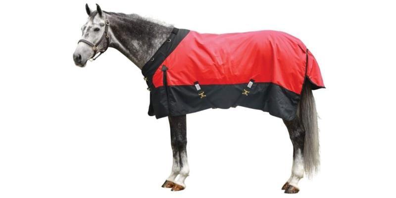 best horse blanket